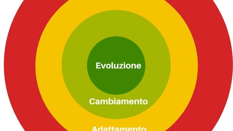Le 4 fasi dell'evoluzione